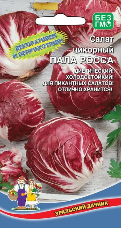 Выращивание салат пала росса 92